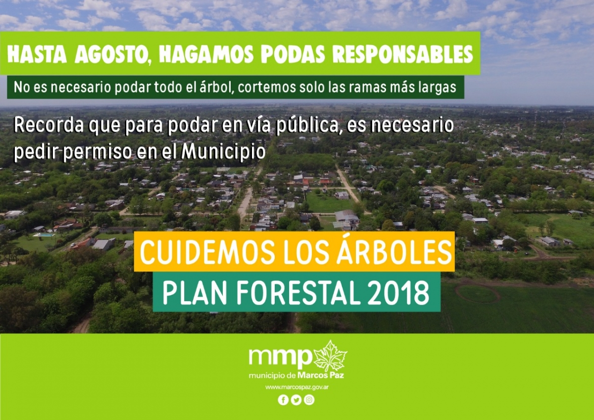 Plan Forestal 2018: poda responsable
